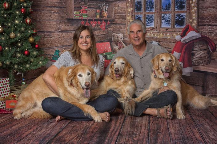 Golden Retriever & Family Christmas