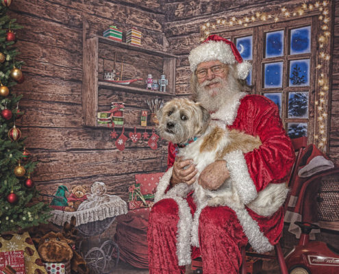 Denton Pet Photographer, Santa & Dog, Christmas Dog