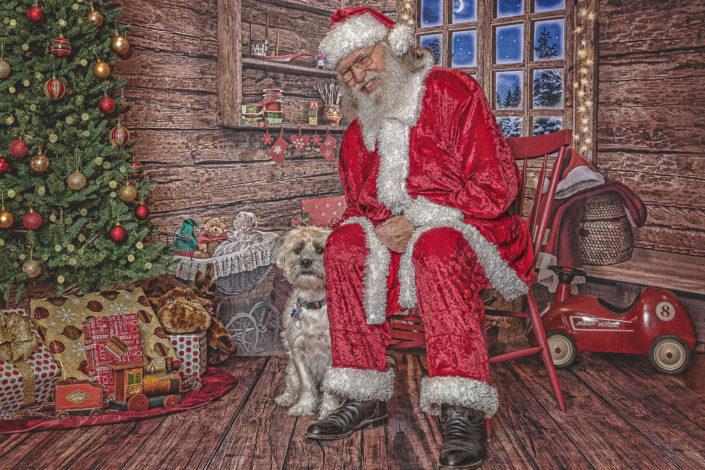 Shy Christmas Dog & Santa